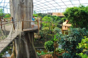 Zoo-Leipzig-Gondwanaland